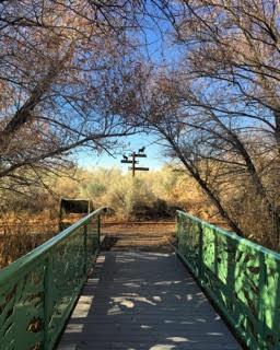 bridge view.jpg
