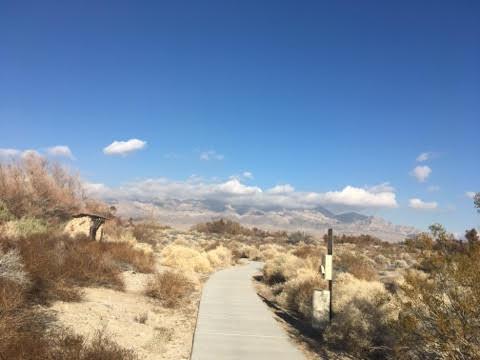 path view.jpg