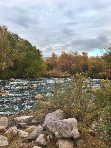 river view.jpeg